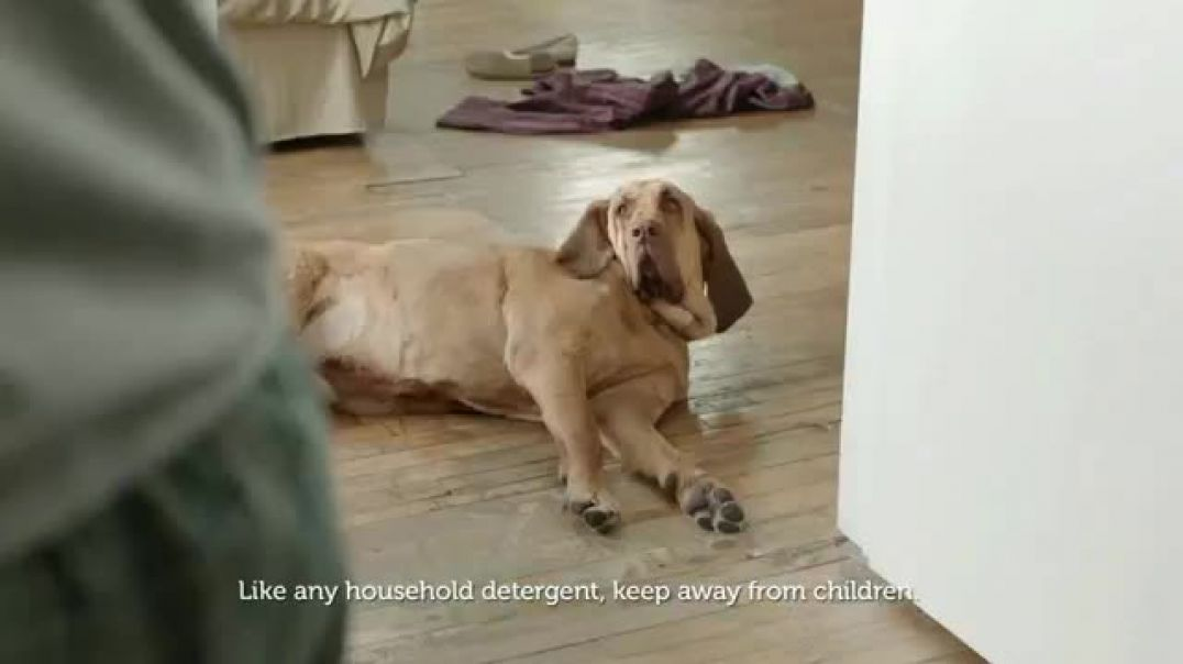 Gain Flings! New TV Advert Dogs Towel Commercial