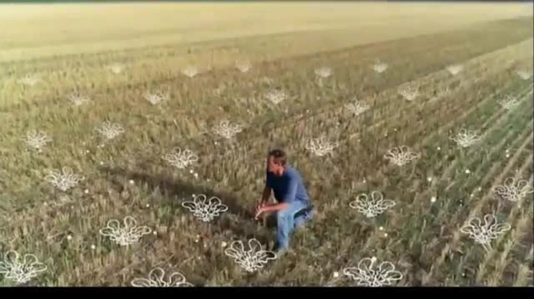 SD Corn Utilization Council TV Commercial Ad This Is Farming Cover Crop Commercial 2019