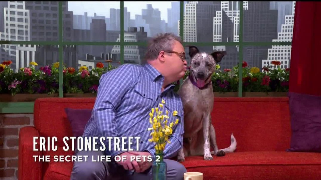 Watch Clear the Shelters Commercial The Secret Life of Pets 2 Forever Home Feat. Lake Bell Patton O