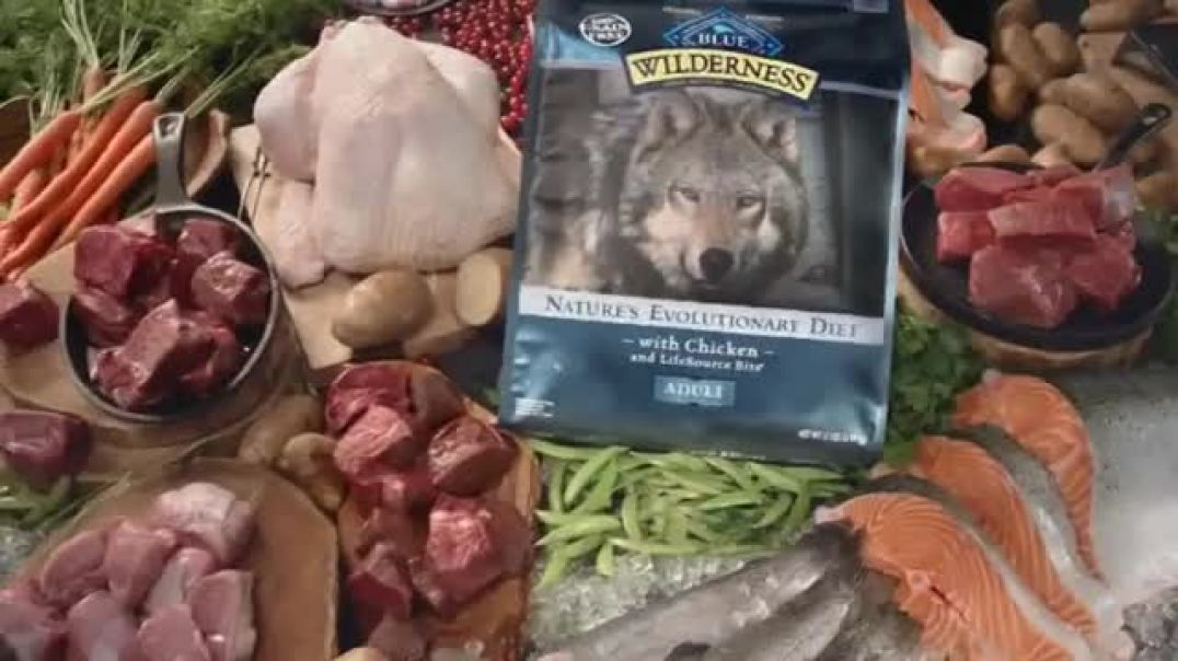 Watch Blue Buffalo TV Commercial Ad, Feed the Wolf Venture Into the Wild Sweepstakes
