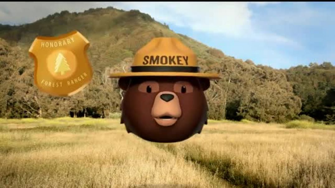 Watch Smokey Bear Campaign TV Commercial Ad, Tall Grass Wildfires Featuring Betty White