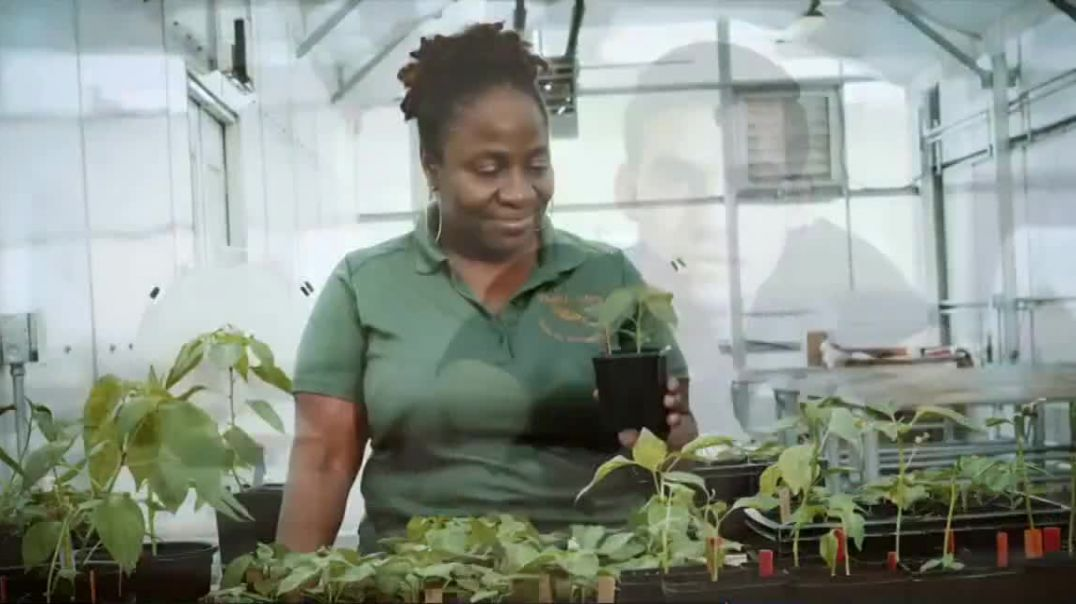 Watch Florida Agricultural and Mechanical University TV Commercial, Rising
