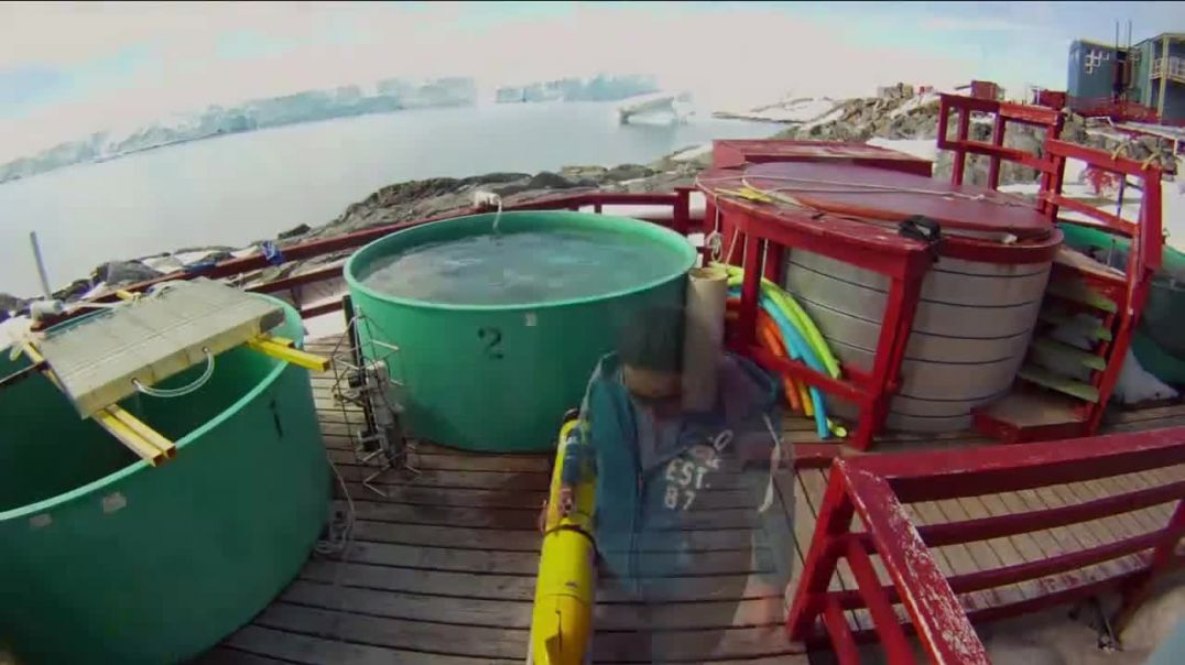 Watch BTN LiveBIG TV Commercial Ad, How Rutgers Is Keeping an Eye on Our Oceans