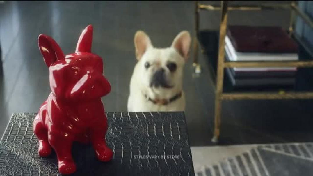 Watch HomeGoods TV Commercial Ad, Frenchie Find