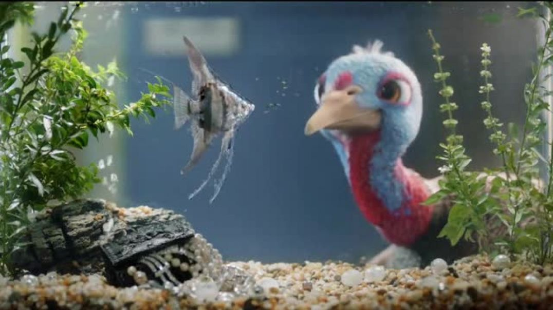 Chantix TV Commercial Ad Its Time to Quit Slow Turkey