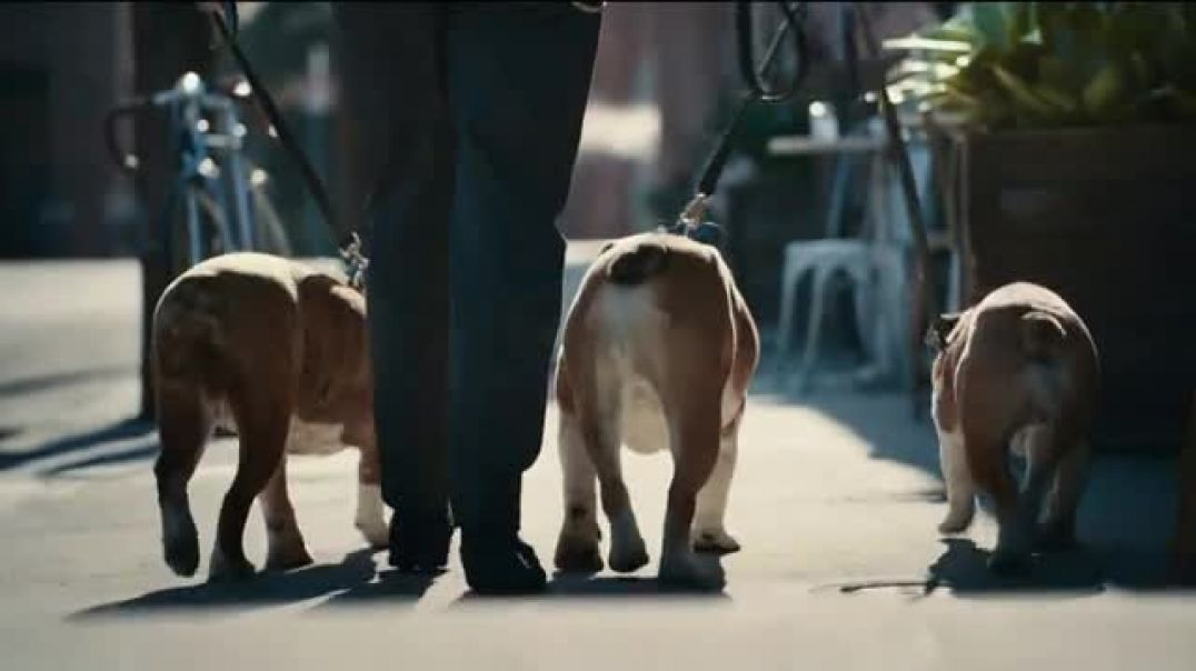 2020 Toyota Corolla TV Commercial Ad The Pack.mp4