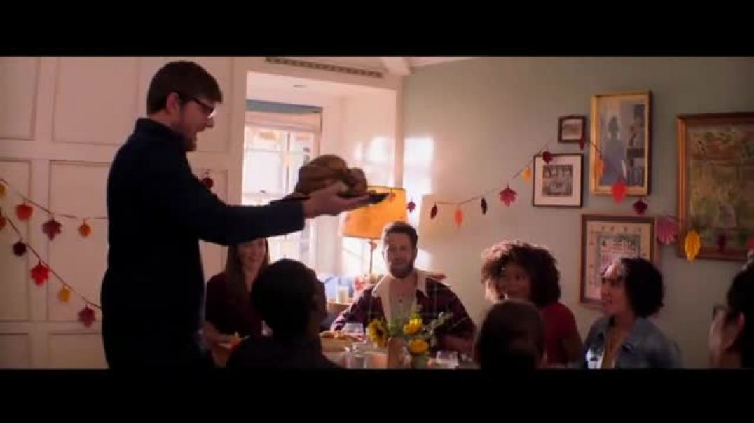 Meijer Frozen Turkey TV Commercial Ad Thanksgiving 33 Cents a Pound.mp4