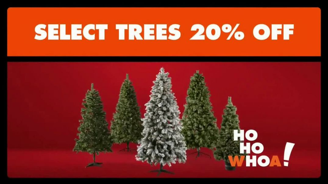 Big Lots Black Friday Sale TV Commercial Ad Holiday Big 20 Percent Off Select Trees.mp4
