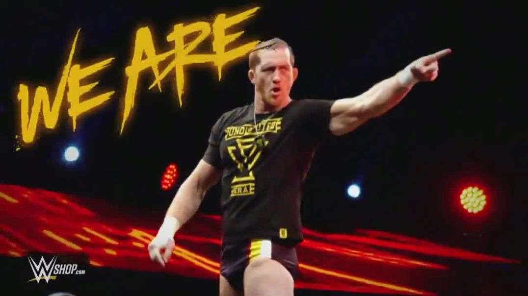 WWE Shop TV Commercial Ad We Are 20 Percent Off Titles & 40 Percent Off Tees.mp4