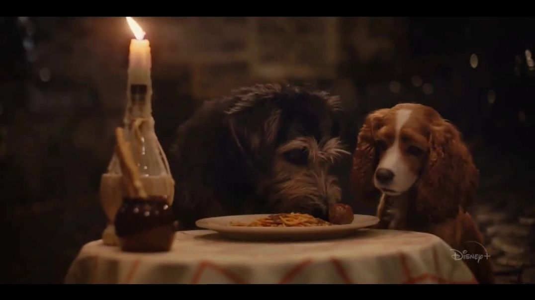 Disney+ TV Commercial Ad Lady and the Tramp.mp4