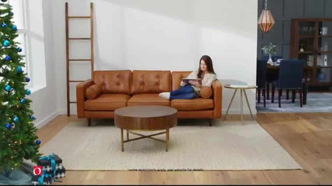 Overstock.com Cyber Monday Blowout TV Commercial Ad 25 Percent off Rugs.mp4