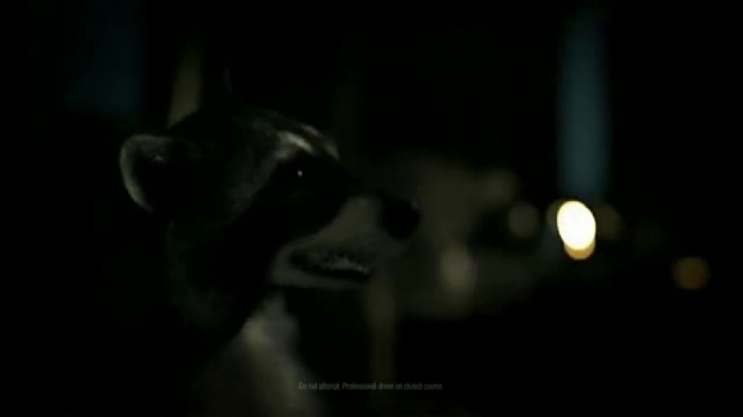 GEICO TV Commercial Ad, Raccoons Sequel Heist.mp4