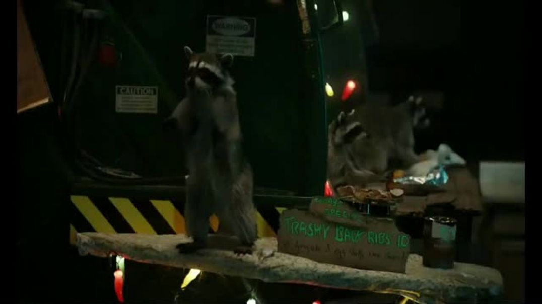 GEICO TV Commercial Ad, Raccoons Sequel Food Truck.mp4