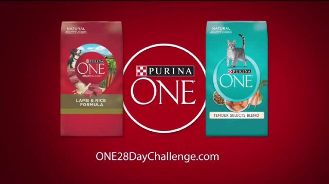 Purina ONE TV Commercial Ad, 28 Days. ONE Visibly Healthy Pet.mp4