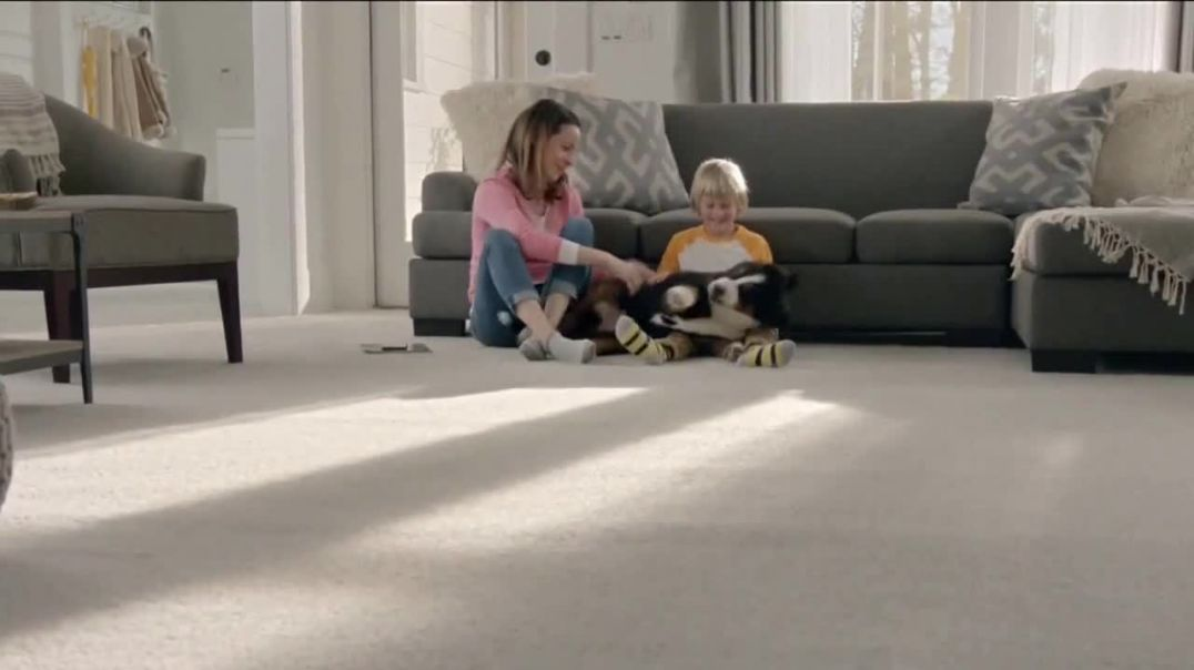 The Home Depot TV Commercial Ad, Filled With Memories Official Carpet of the Puppy Bowl.mp4