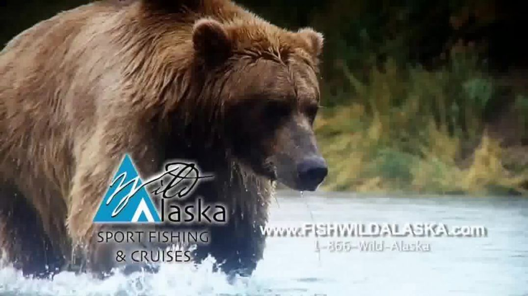 Wild Alaska Cruises TV Commercial Ad, Great Migration.mp4