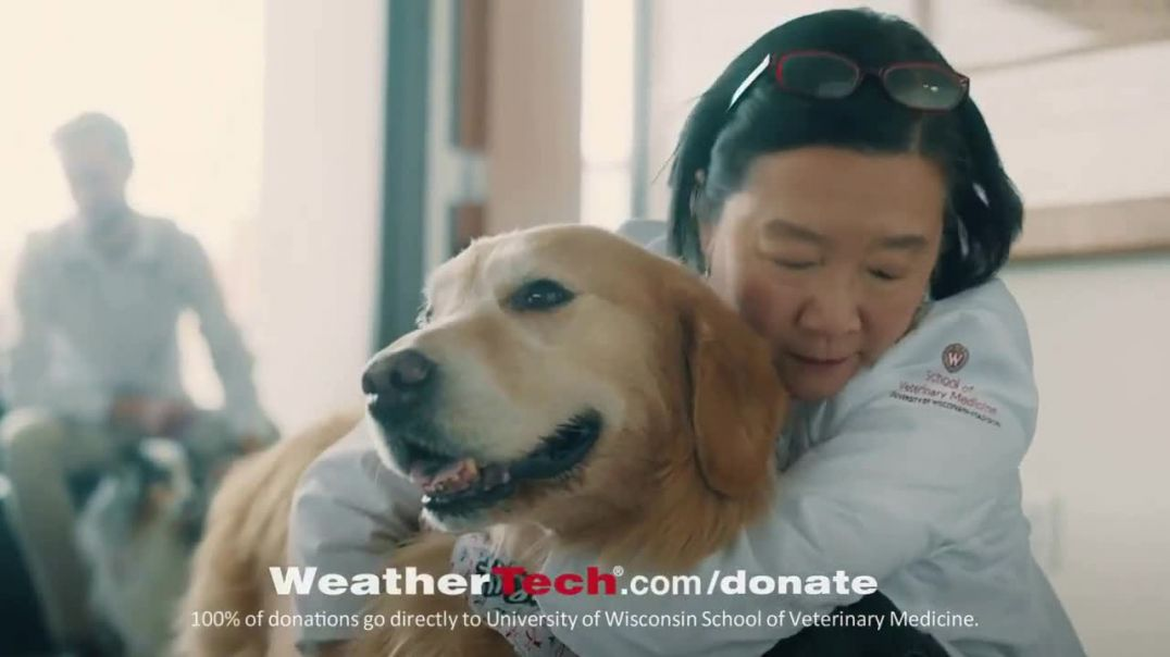 WeatherTech Super Bowl 2020 TV Commercial Ad, Lucky Dog.mp4