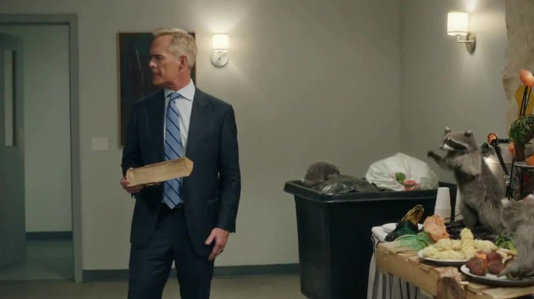 GEICO Insurance TV Commercial Ad, The Raccoons Cook for Joe Buck.mp4