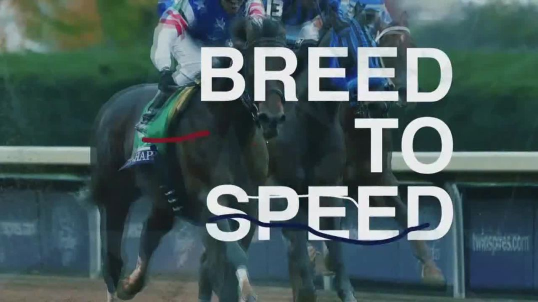 Claiborne Farm TV Commercial Ad, Runhappy Breed to Speed.mp4