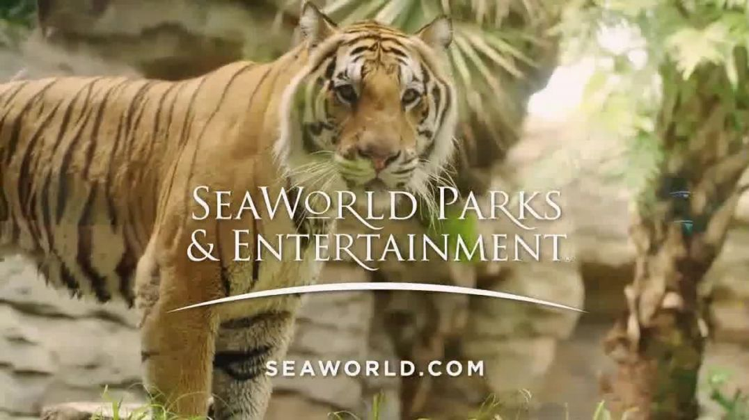 SeaWorld TV Commercial Ad, The World We All Share.mp4