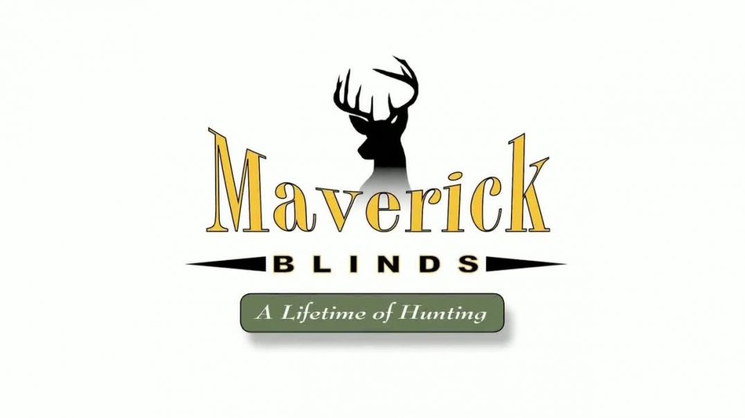 Maverick Blinds TV Commercial Ad, Forest Song by Tomer Katz