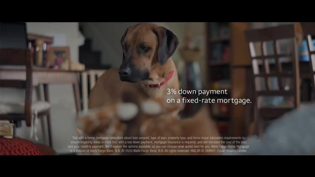 Wells Fargo TV Commercial Ad, Lulu and Lobo Need a Bigger Place