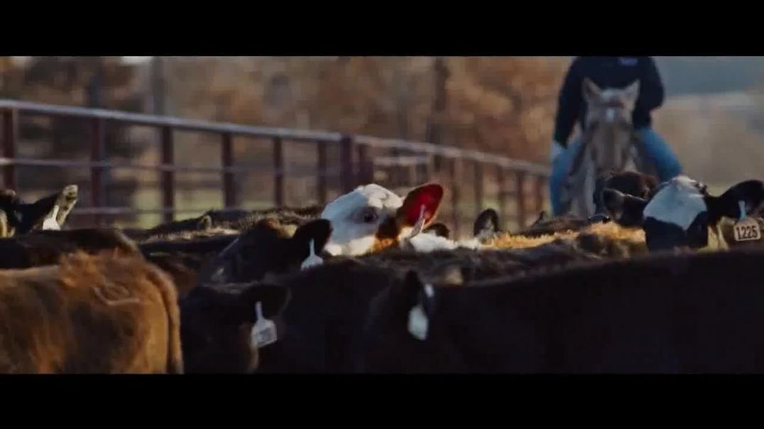 Merck Animal Health TV Commercial Ad 2020, Family Legacy