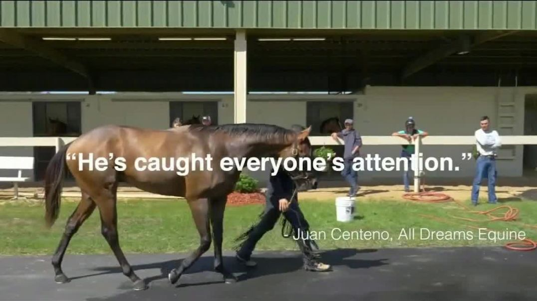 Claiborne Farm TV Commercial Ad 2020, Runhappy Rage and Justasprinkle