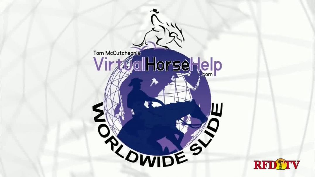 Virtual Horse Help and Worldwide Slide TV Commercial Ad 2020, Online Access