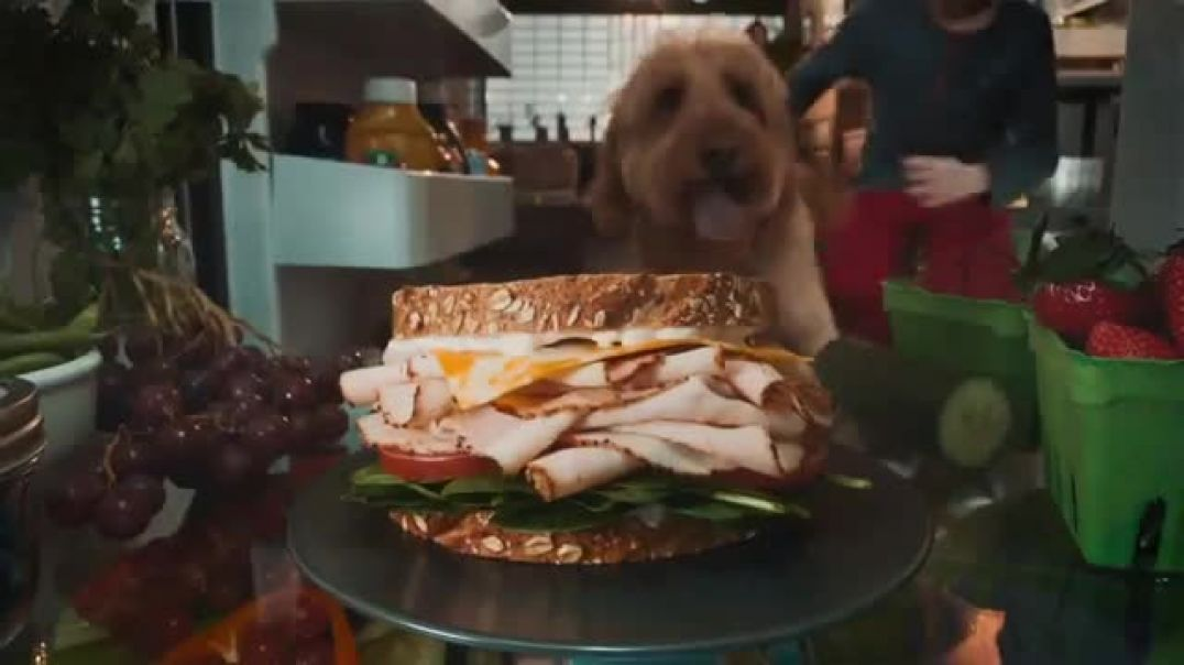 Oscar Mayer Deli Fresh TV Commercial Ad 2020, Not Just a Sandwich