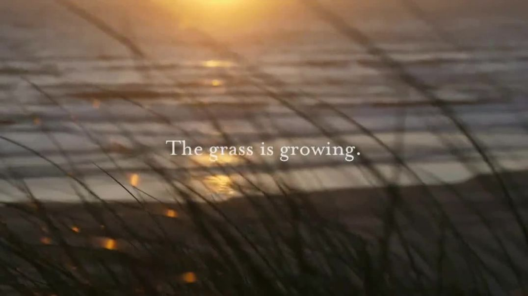 Bandon Dunes Golf Resort TV Commercial Ad 2020, The Grass Is Growing
