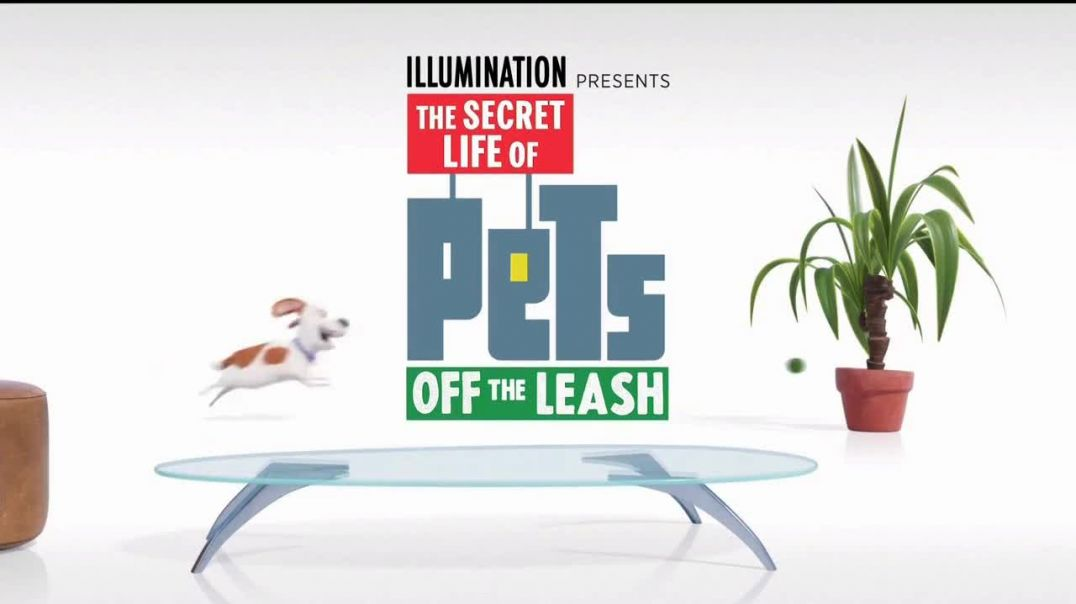 Universal Studios Hollywood TV Commercial Ad 2020, The Secret Life of Pets- Off the Leash - Ride Com
