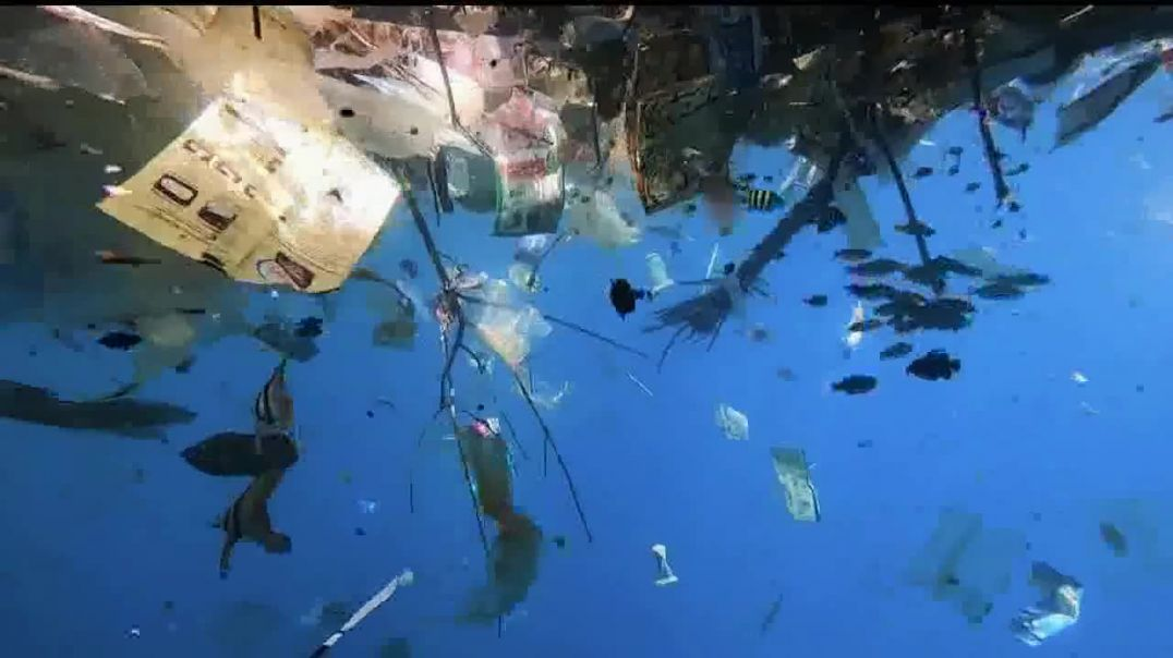 4ocean TV Commercial Ad 2020, Eight Million Tons of Plastic