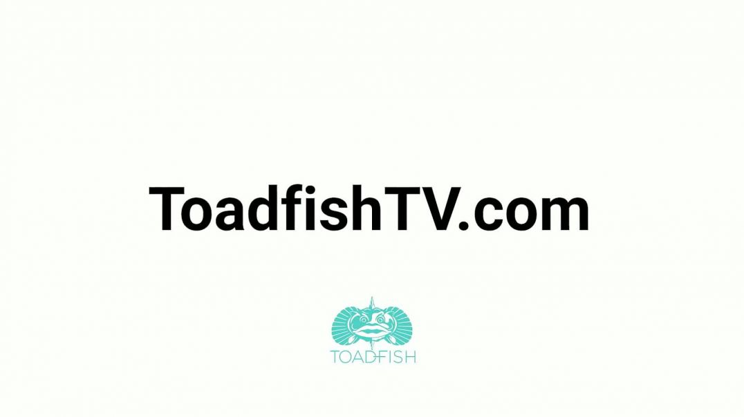 Toadfish Can Cooler TV Commercial Ad 2020, Holds On Song by Joseph Milauskas