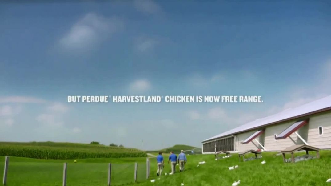 Perdue Farms Harvestland TV Commercial Ad 2020, A Walk Outside
