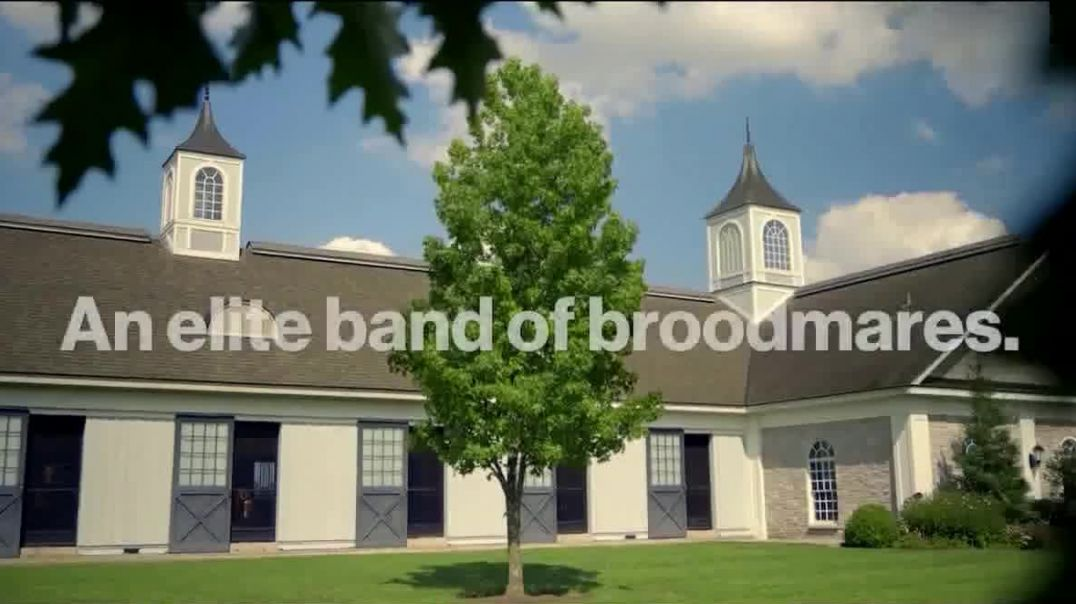 Stonestreet Farms 2020 September Yearling Sales TV Commercial Ad 2020, Proven