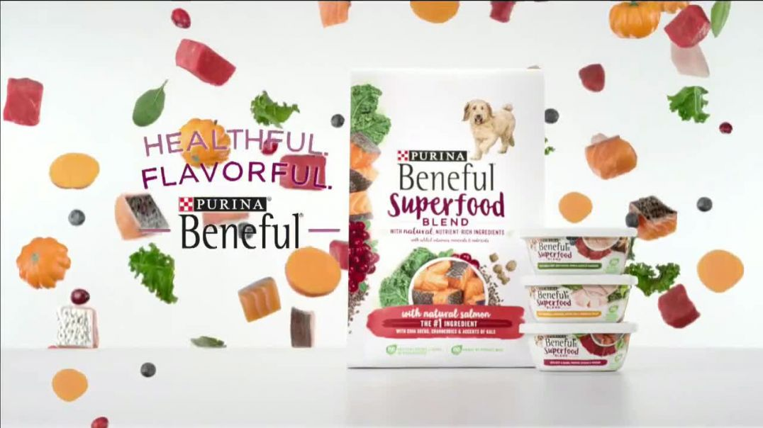 Purina Beneful Superfood Blend TV Commercial Ad 2020, Nutrient-Rich- More Recipes