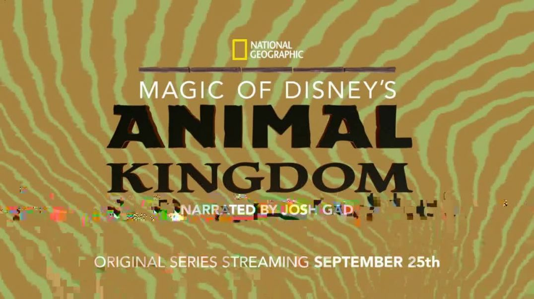 Disney+ TV Commercial Ad 2020, Magic of Disneys Animal Kingdom