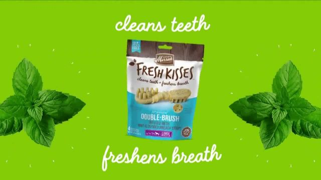 Merrick Pet Care Fresh Kisses Mint Breath Strips TV Commercial Ad 2020, Loving Moments