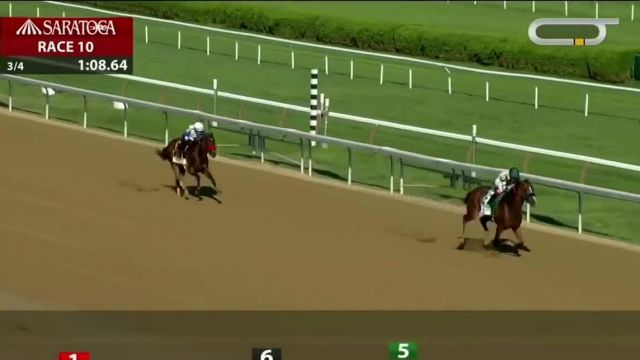 Keeneland September Yearling Sale TV Commercial Ad 2020, Halladay, Swiss Skydiver, Gamine