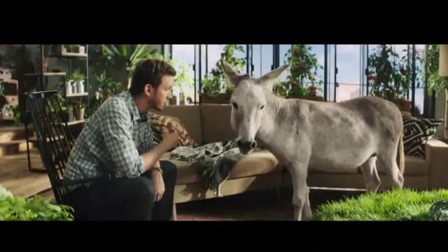 Farm Rich TV Commercial Ad 2020, A Lesson in Snack Math