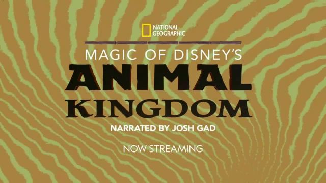 Disney+ TV Commercial Ad 2020, Magic of Disney's Animal Kingdom