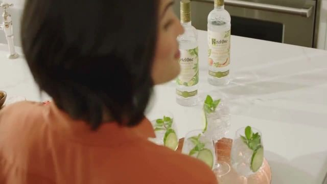 Ketel One Botanical TV Commercial Ad 2020, For a Fresh Taste' Song by Berkant Uluer