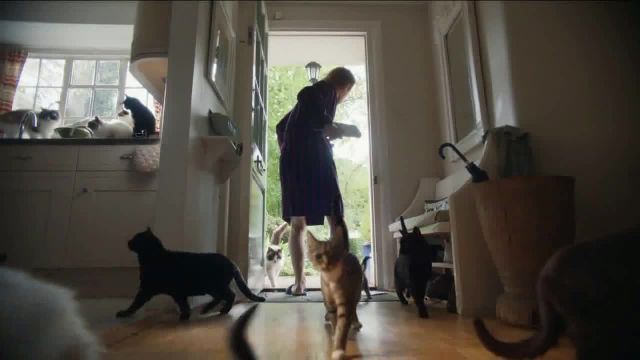 AmeriSave Mortgage TV Commercial Ad 2020, Mike the Cat Lady Man- Refinancing