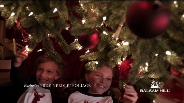 Balsam Hill Cyber Monday Sale TV Commercial Ad 2020, This Tree- Up to 50% Off