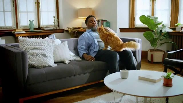 Fresh Step Clean Paws TV Commercial Ad 2020, Cleaner Beans