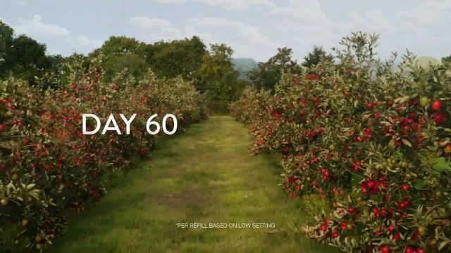 Air Wick Scented Oils TV Commercial Ad 2021, Apple Orchard
