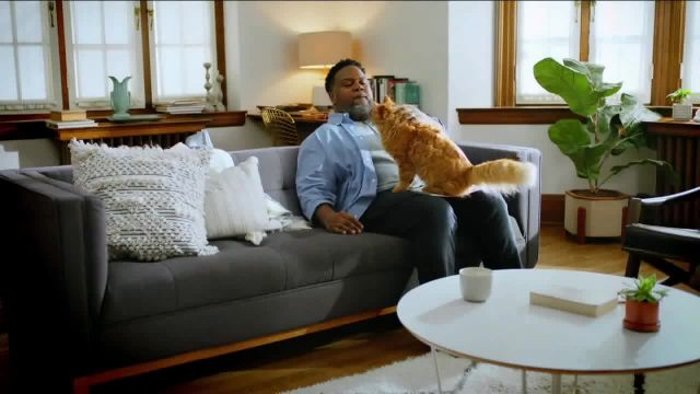 Fresh Step Clean Paws TV Commercial Ad 2021, Cleaner Beans
