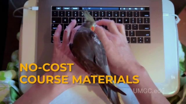 UMGC TV Commercial Ad, Hustle Looks Different- No Application Fee' Song by Van McCoy