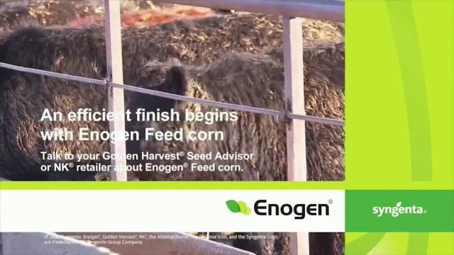 Syngenta Enogen Feed Corn TV Commercial Ad 2021, Conversion Rates Cole Baker